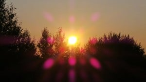 Aug 14-1-Samurai Innovation 90 Day Sunrise Goal