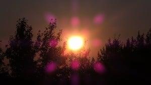 Aug 14-2-Samurai Innovation 90 Day Sunrise Goal
