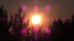 Aug 14-3-Samurai Innovation 90 Day Sunrise Goal