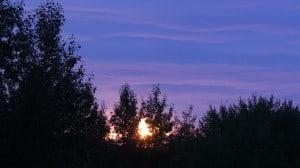 Aug 16-1-Samurai Innovation 90 Day Sunrise Goal