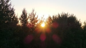 Aug 22-1-Samurai Innovation 90 Day Sunrise Goal