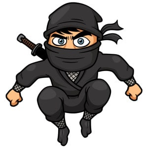 This Ninja will Steal Your Productivty