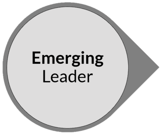 Emerging Leader By Samurai Innovation